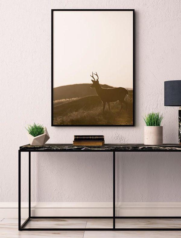 Conjunto lámina ciervo