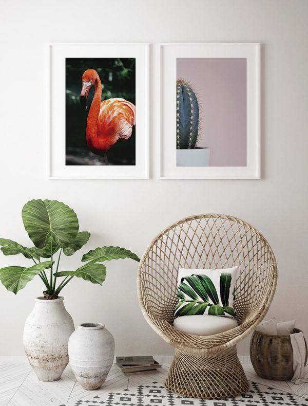 Conjunto lámina flamenco y cactus