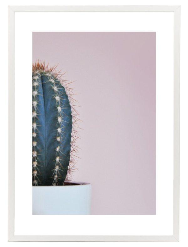 Lámina Cactus Marco Blanco