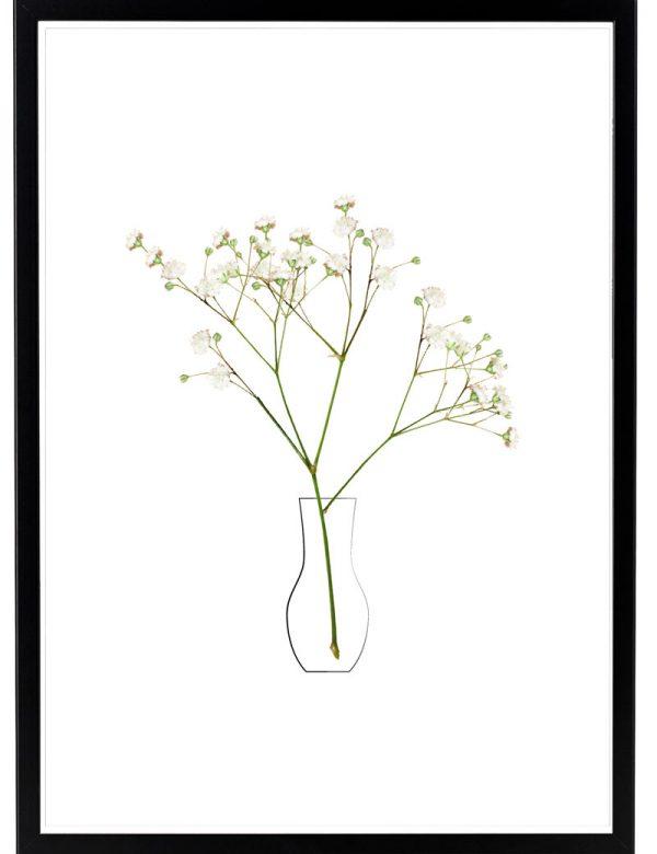 Lámina Flores Blancas Marco Negro