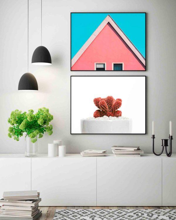 ambiente-lamina-cactus-coral