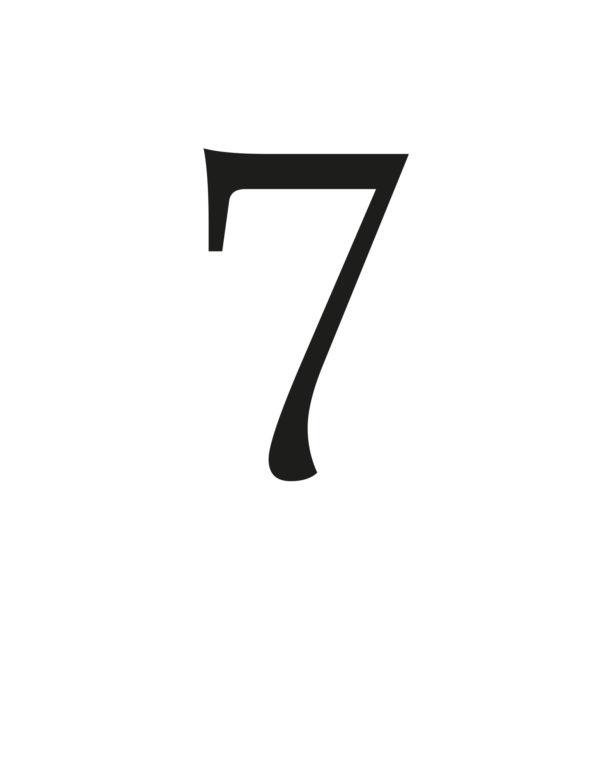 7_SIN_MARCO
