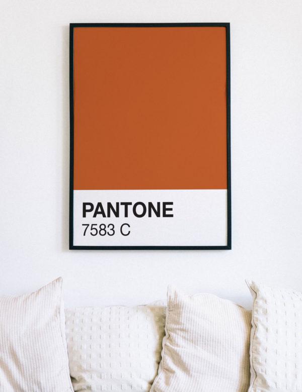 Lámina decorativa Color 7583C