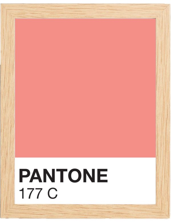 COLOR-1777C-MARCO-MADERA