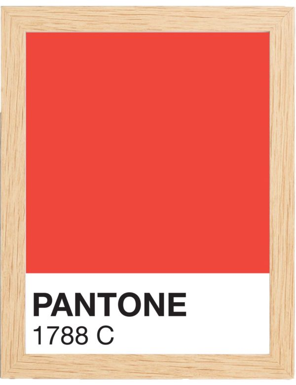 COLOR-1788C-MARCO-MADERA