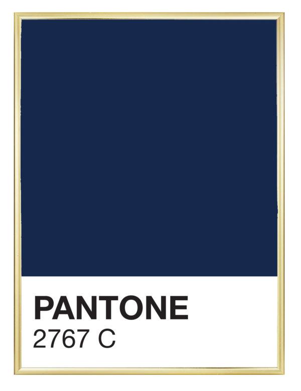 Lámina decorativa Color 2767C con marco dorado
