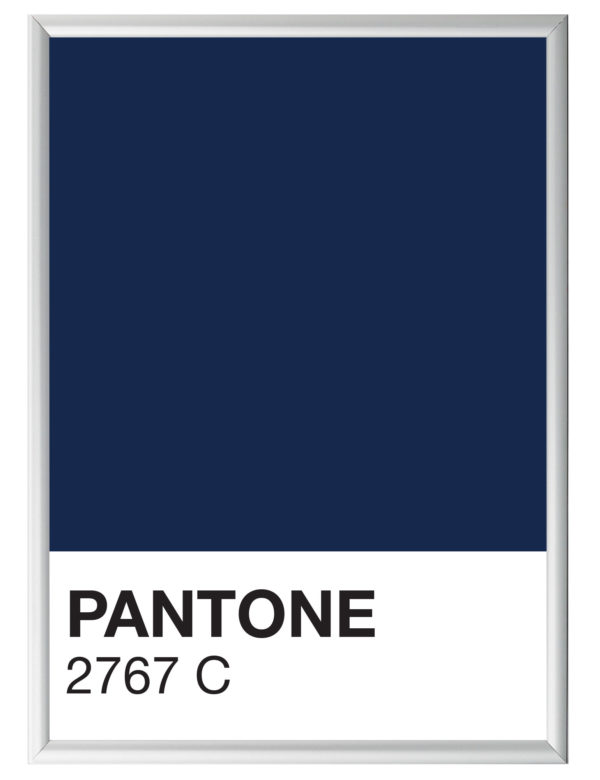 Lámina decorativa Color 2767C con marco plata