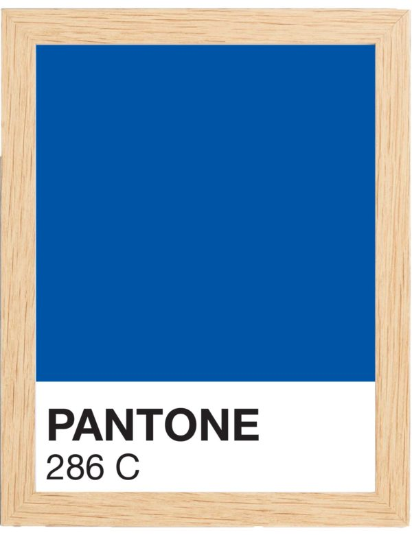 COLOR-286C-MARCO-MADERA