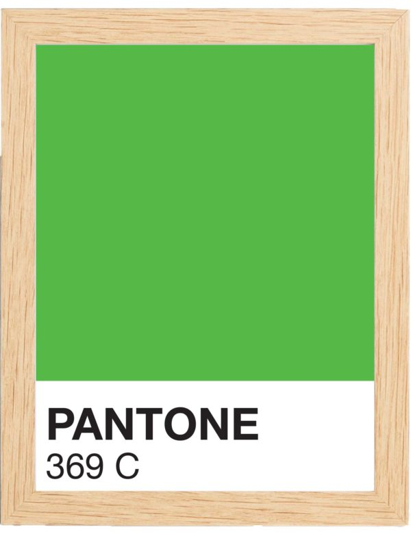 COLOR-369C-MARCO-MADERA