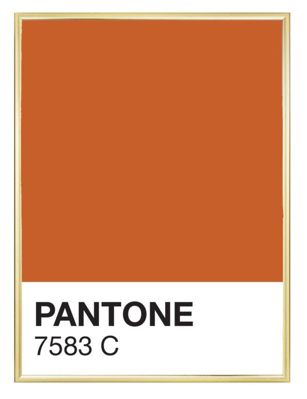 Lámina decorativa Color 7583C con marco dorado