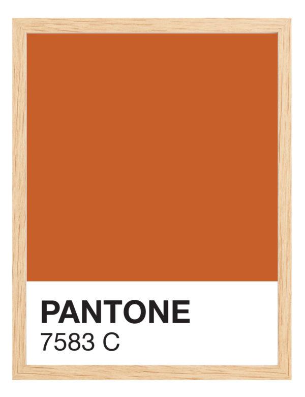 Lámina decorativa Color 7583C con marco madera