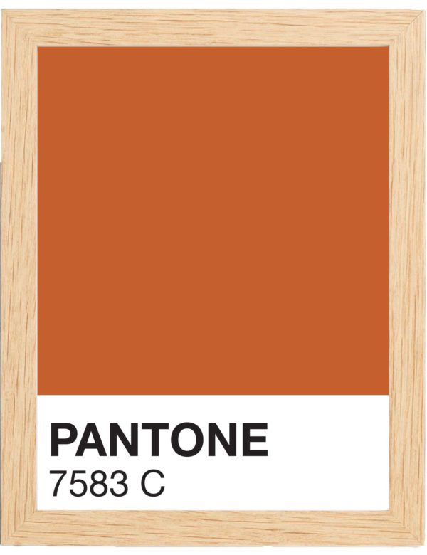 COLOR-7583C-MARCO-MADERA