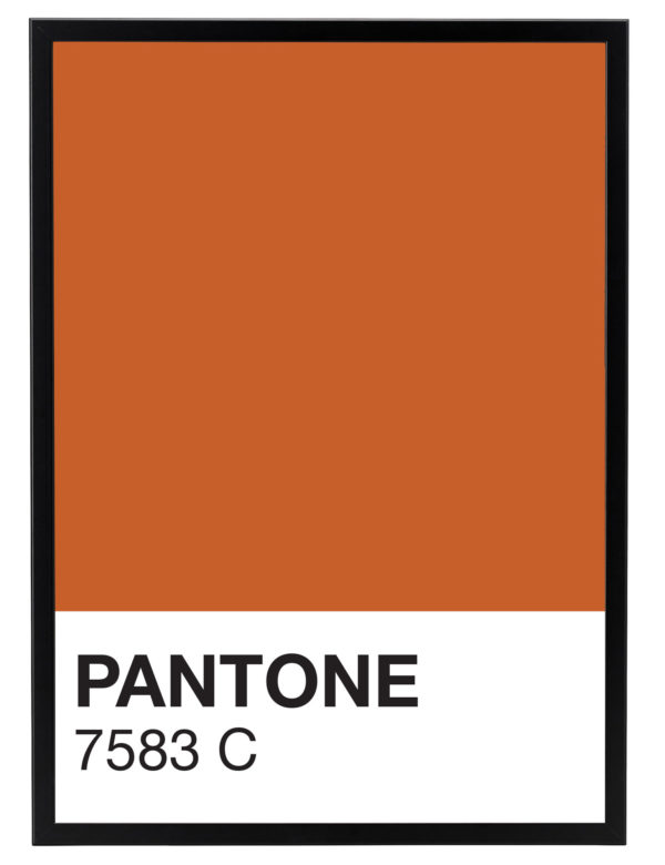 Lámina decorativa Color 7583C con marco negro