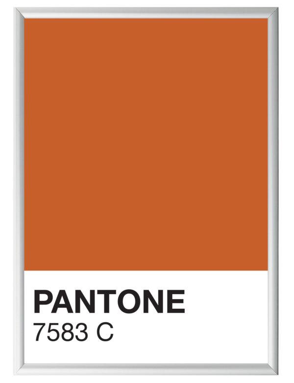 Lámina decorativa Color 7583C con marco plata