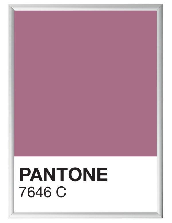 Lámina decorativa Color 7646C con marco plata