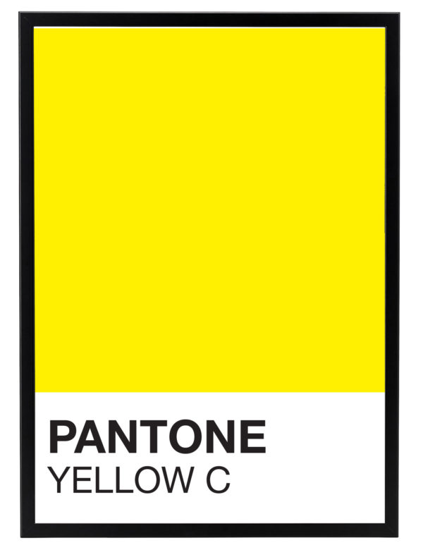 COLOR-YELLOWC-MARCO-NEGRO