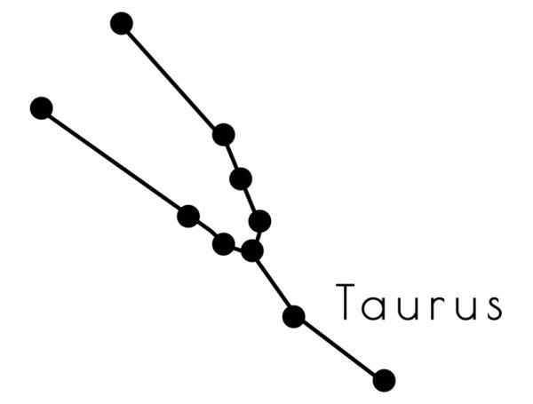 VINILO_TAURUS