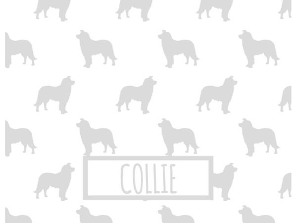 COLLIE_GRIS_INVERTIDO_54x42
