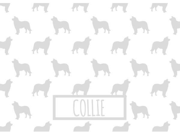 COLLIE_GRIS_INVERTIDO_70x50