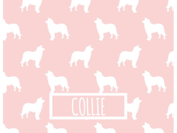 COLLIE_ROSA_54x42