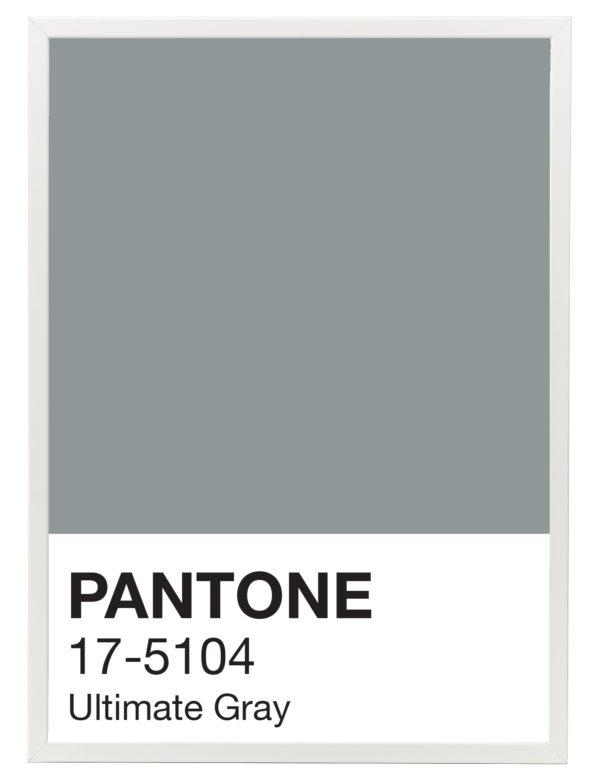 Pantone_Ultimate_Gray_marco_blanco