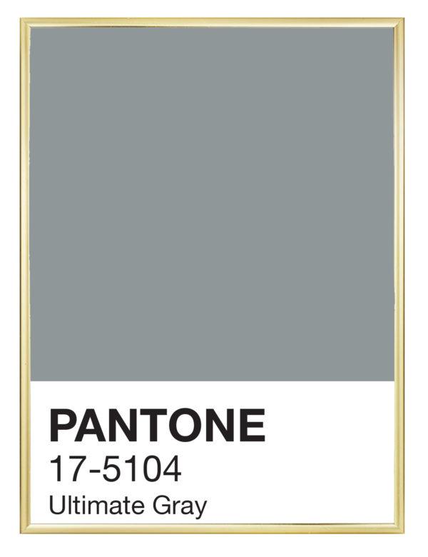Pantone_Ultimate_Gray_marco_dorado