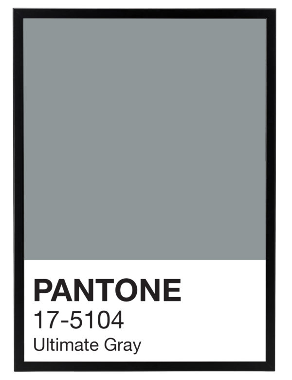 Pantone_Ultimate_Gray_marco_negro