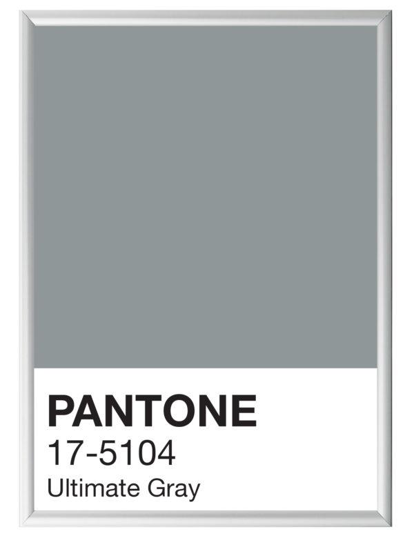 Pantone_Ultimate_Gray_marco_plata