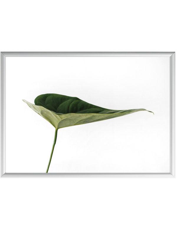 Lámina Hoja Verde en formato horizontal con marco plateado.
