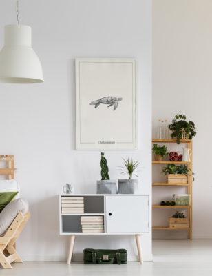 Lámina decortaiva Ilustración Tortuga con marco blanco