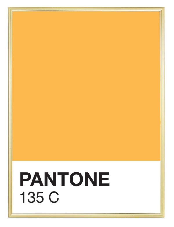 Lámina Color 135 C con marco dorado