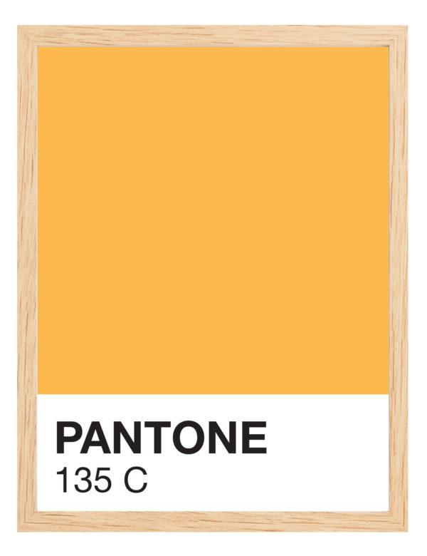 Lámina Color 135 C con marco de madera