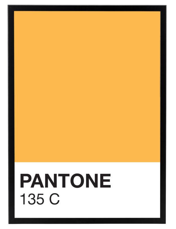 Lámina Color 135 C con marco negro