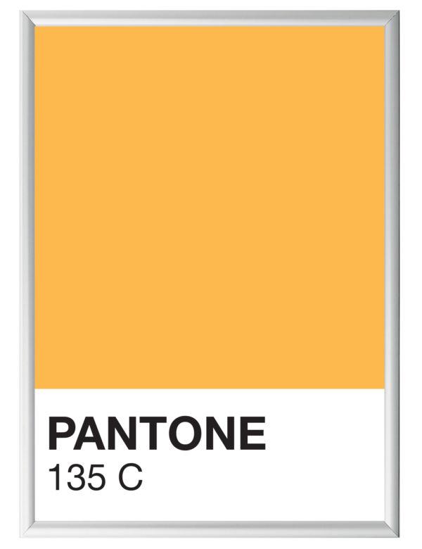 Lámina Color 135 C con marco plateado