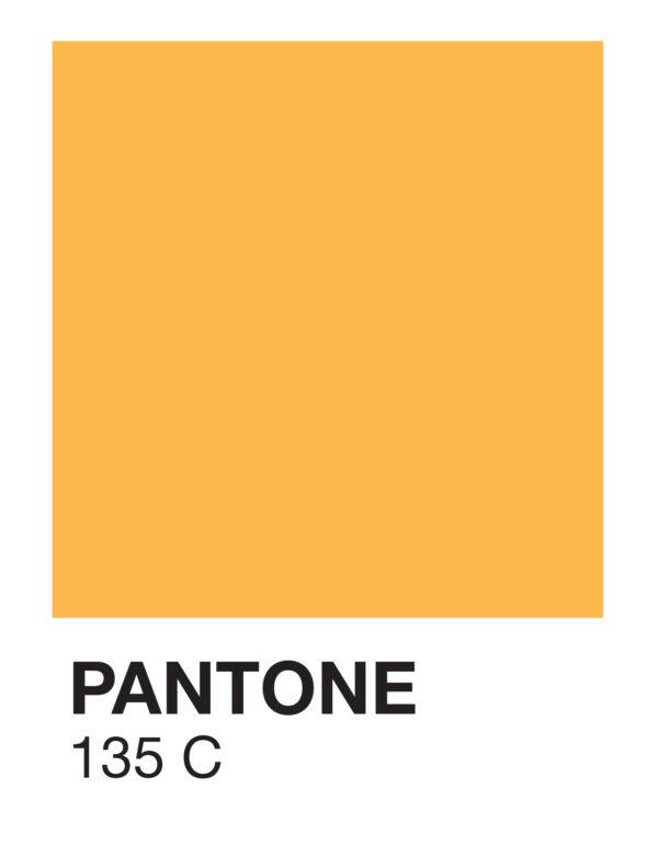 Lámina Color 135 C sin marco